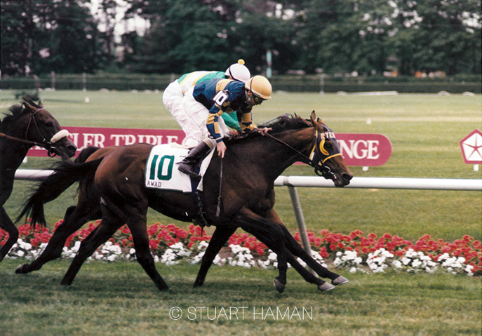 The diminutive bay closed from last of 12 under Eddie Maple to get up by a nose in Belmont Park's Manhattan Stakes-G1 in June 1995 while carrying top weight. His time of 1:58.57 was less than a second off the course record.