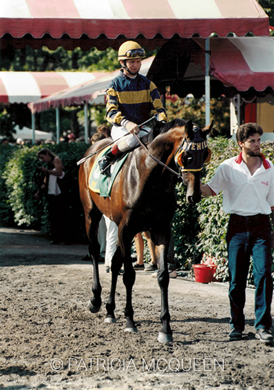 The 7-year-old Awad heading out for the 1997 Grade 1 Sword Dancer Invitational Handicap. The previous year he had finished second, missing by a neck to Kiri's Clown while carrying high weight of 121, seven pounds more than the winner.