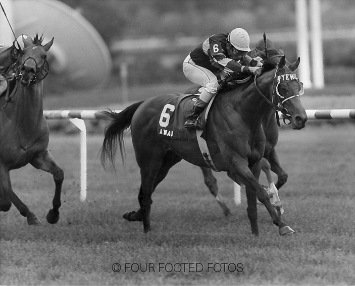 The first Grade 1 win of Awad's career came at Arlington Park in the Secretariat Stakes for 3-year-olds at a mile and a quarter on the turf. Overlooked at 22-1, he rallied down the stretch over the soft course to win by more than a length.