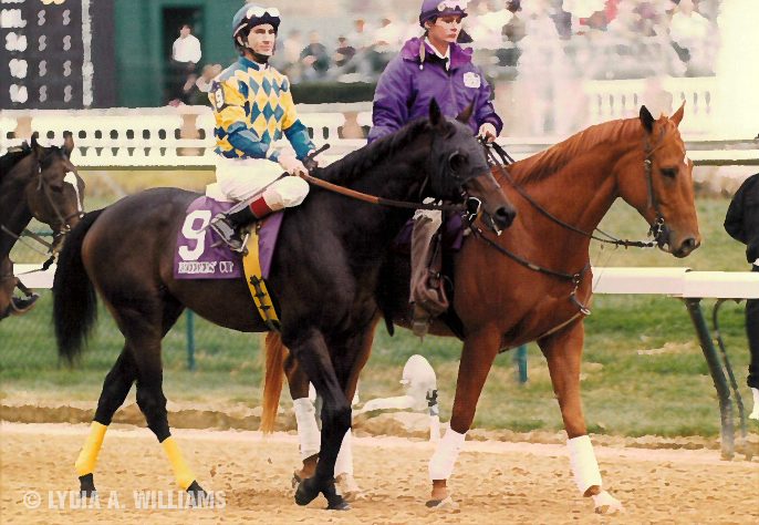 Postward for the 1994 Breeders' Cup Classic-G1 at Churchill Downs with Jerry Bailey up.