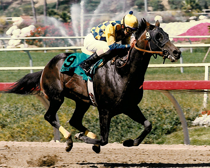 Concern's first trip to the West Coast the summer of his 4-year-old season resulted in a two and three-quarter-length score in the Grade 1 Californian Stakes under Mike Smith, defeating a field that included Best Pal and Tinners Way.