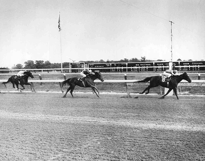 The final graded win of Jameela's illustrious career was the Grade 1 Delaware Handicap on August 1, 1982. With Jack Kaenel up, she defeated Zvetlana and Love Sign and ran the mile and a quarter in 2:02.60