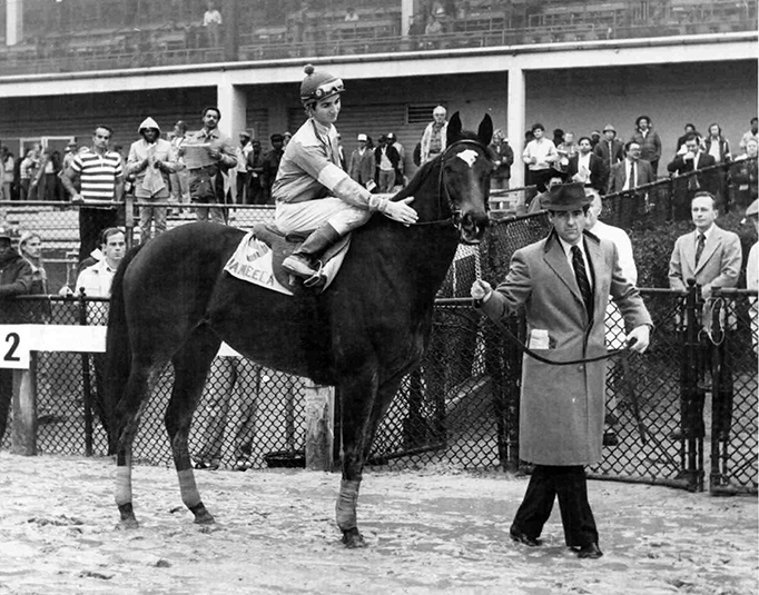 Peter Brant leads Jameela in her retirement farewell at Laurel in December 1982. Cowboy Jack Kaenel is in the saddle. Brant chose to breed Jameela to Mr. Prospector the next spring—the result of that mating was champion sprinter and top sire Gulch. Double J Photo