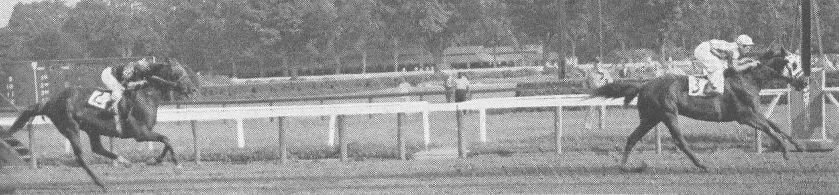 Leaving the rest of the field behind, Social Outcast captured the 1955 Saratoga Handicap on August 20, with Red Hannigan finishing second.