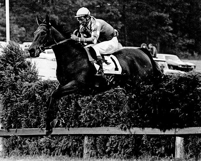 Soaring through a brush fence at Wellsville in Pennsylvania, Tuscalee gets his 30th career victory on May 16, 1970, in the Fox Memorial Trophy with Joe Aitcheson aboard. Douglas Lees photo.