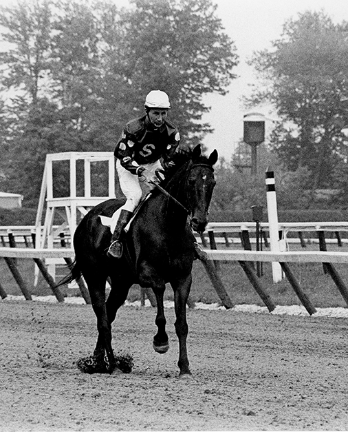 """Tuscalee Day at Delaware Park,"" in June 1971, celebrated the famed steeplechaser, who won five stakes at the track, including back-to-back runnings of the Indian River Steeplechases, and set a course record in 1965. He was galloped around the track and then presented with a garland of flowers and a trophy in the winner's circle. Winants Bros. photo"