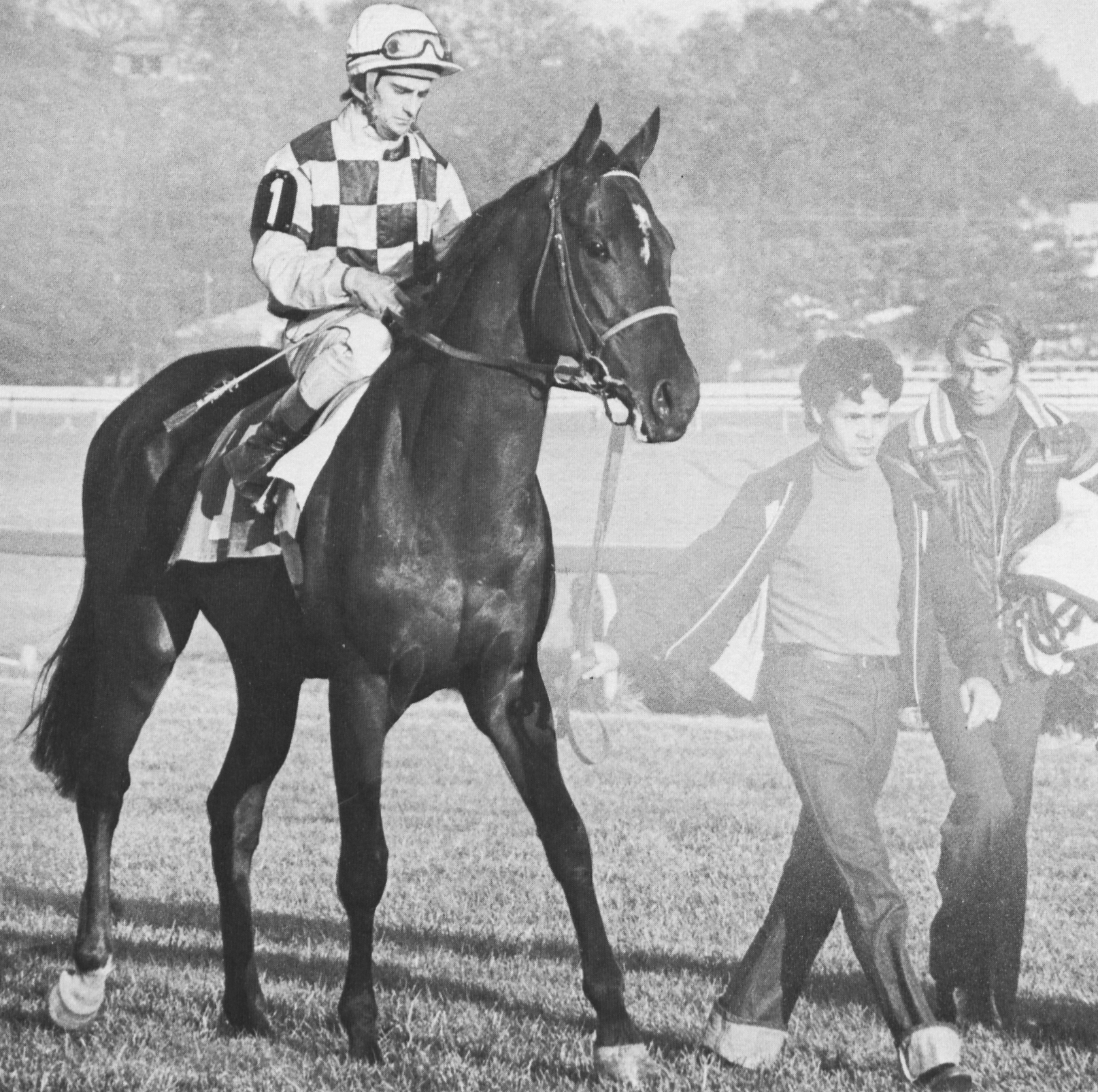 Nelson Bunker Hunt's Youth is led out ahead of the 1976 $150,000 Washington D.C., International, which he won to become the first Maryland-bred in the 25-year history of the race to do so.