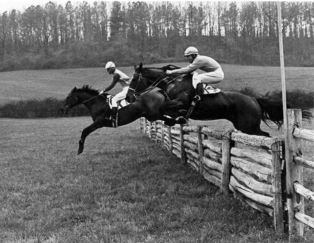 Nemesis Mountain Dew, also a three-time Maryland Hunt Cup winner, leads Jay Trump in the 1966 Maryland Hunt Cup