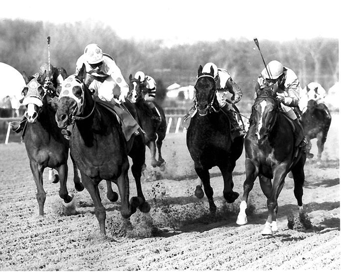 A mad dash to the wire in the the $200,000 General George Stakes, one of Little Bold John's rare appearances in a race at a distance under one mile. He completed the seven furlongs in 1:22 4/5 while defeating Oraibi (right) and Finder's Choice (second right).