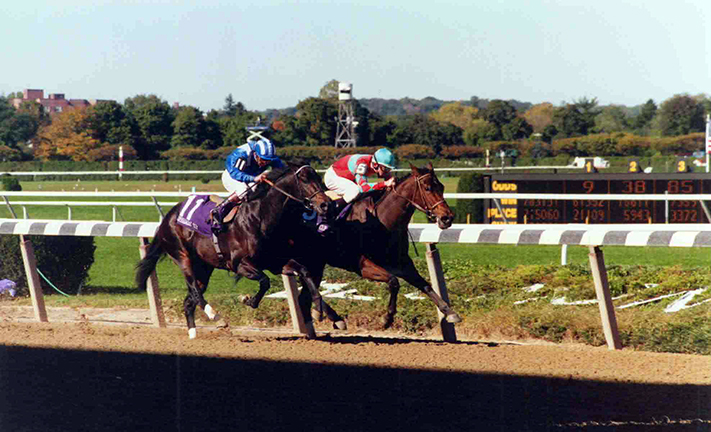 The highlight of a career in which Safely Kept won 24 of 31 starts, 22 in stakes, was the 1990 Breeders' Cup Sprint-G1 win at Belmont Park over Dayjur. The stretch run was one of the most astonishing in Breeders' Cup history, as Safely Kept (inside, with Craig Perret riding) battled her shadow-jumping rival to the wire to win by neck. Christopher P. Hoff photo