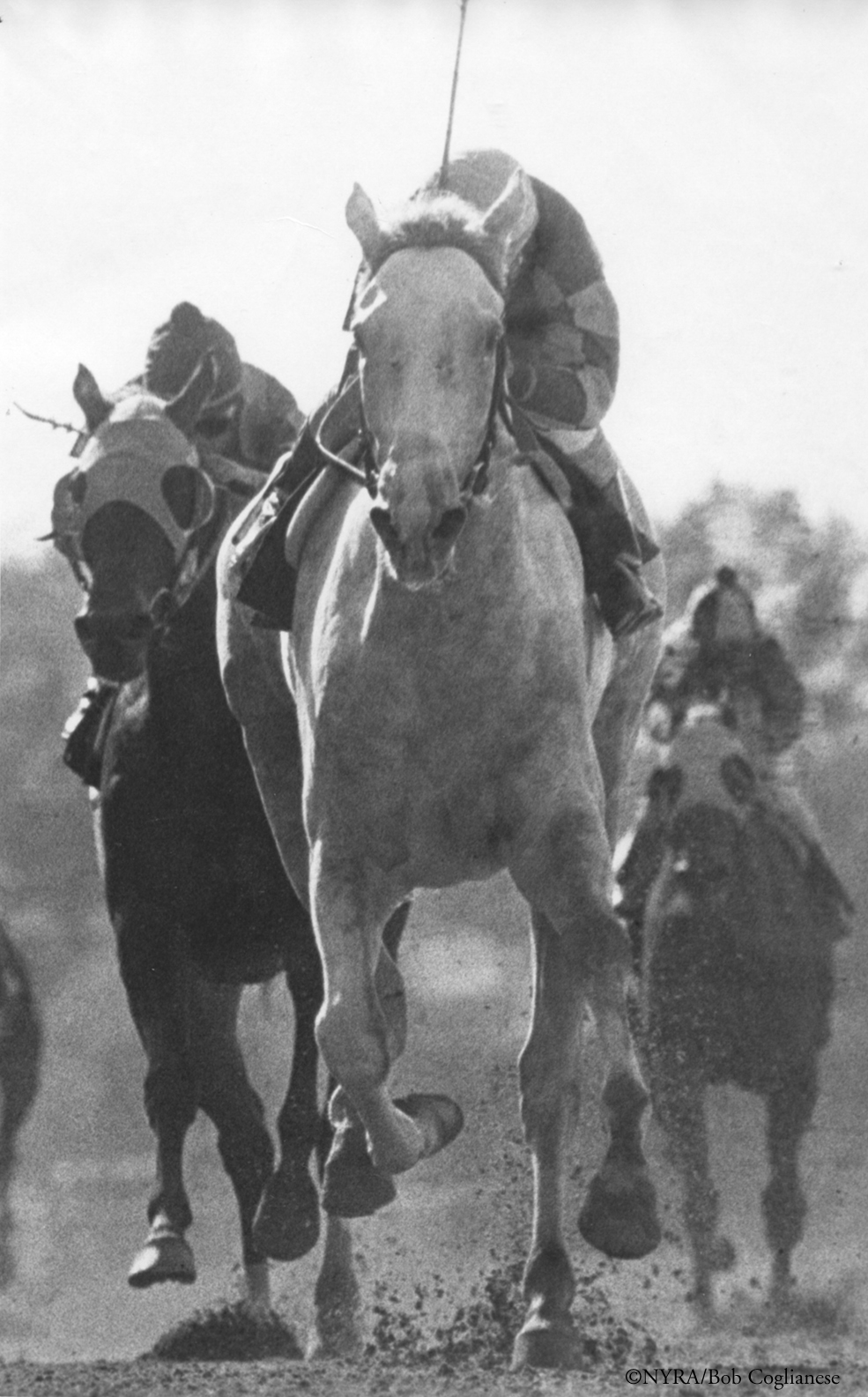 Heavenly Cause earned Eclipse Award honors among 2-year-old fillies in 1980, giving Jim Ryan a repeat unequaled by a Maryland breeder.