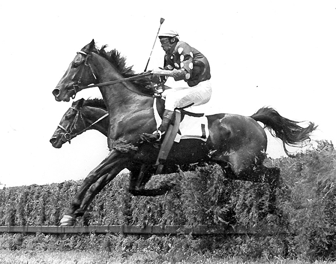 Midway through his record-breaking 1966 season, Tuscalee led in Delaware Park's Georgetown Steeplechase, which he went on to win by nine lengths. It was his fifth of 10 wins his championship season, a single season win record he still holds. Ed. Ewing (Delaware Park) photo